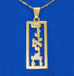 Framed Vertical 14k Gold Hebrew Print Name Necklace
